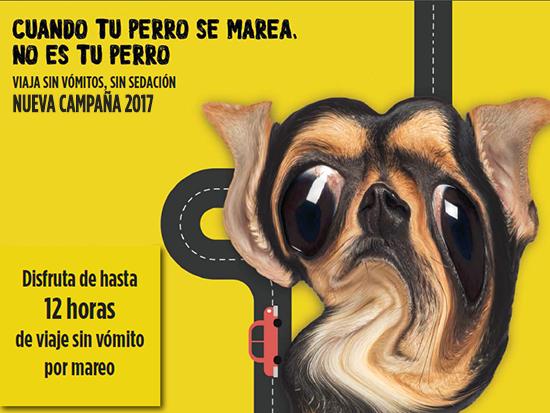 campaña_mareo