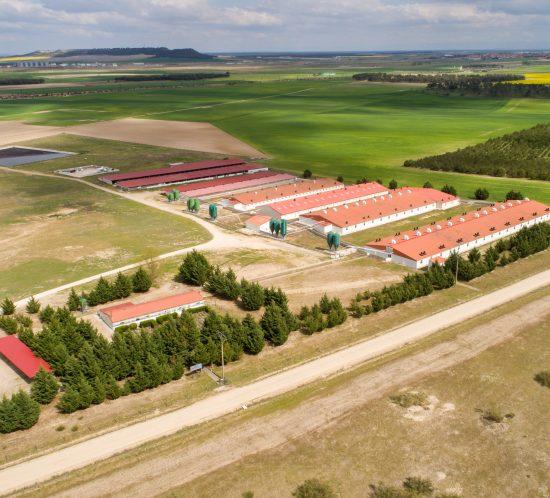 Agrocesa-Grupo Vall Companys. Granja La Mejorada. Olmedo Valladolid